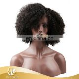 "10"" kinky curly wig handmade wig, cheap price and high quality"