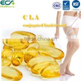 Slimming CLA EE Softgel in herbal supplement                                                                         Quality Choice