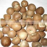 EXPORTING DRIED BETEL NUT FOR THE BEST PRICE