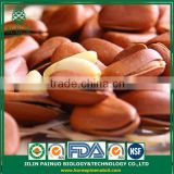 Direct Buy from China Siberian Cedar Open Pine Nuts in Shell