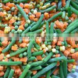 China manufacture high quality frozen vegetable organic