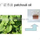 wholesale suppliers of pure patchouli essential oil herb oil