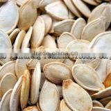Chinese snow white pumpkin seeds in shell