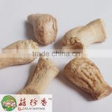 Dried fungus button mushroom logs
