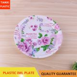 TX0316 PLASTIC LARGE SIZE ROUND PLATE CHEAP PLATE FOOD PLATE