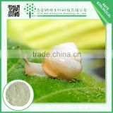 Gold Supplier China herbal extract / natural cosmetic ingredient snail extract                                                                         Quality Choice