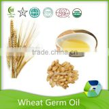 factory supplier anti-fatigue wheat germ oil carrier oil