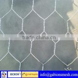 GI hexagonal wire mesh,pvc hex wire mesh,chicken coop hexagonal wire mesh,with low price