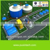 power biogas plant for generating electricity
