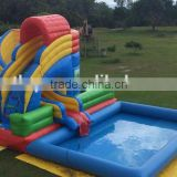 giant inflatable water slide for adults, forzen water slide, water slide with pool