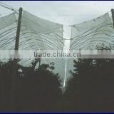 140gsm pe woven fabric plastic rain cover for grape fruit tree and orchard
