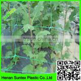 climbing mesh for cucumber plant breeding bop stretch mesh for plant china factory supply