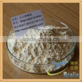 High Quality Lecithin High Potency