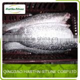 Skinless Iqf Tilapia Fillet Fish For Sale