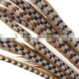 Factory Supply 100-110cm Natural Craft Reeves Pheasant Tail Feather