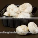 Supermarket Display Customizable Eco Friendly Plastic Mushroom Packing Tray