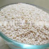 Indian Hulled White Sesame Seeds