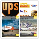 DHL international shipping rates from china guangzhou shenzhen to USA/UK/Canada/Saudi Arabia/Australia