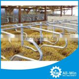 hot sale dairy cow freestall for cow farm equipment