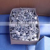 Umbrella Roofing Nail Hot Dipped Galvanized Steel Manufacture