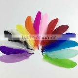 hot sell color plumes dyed goose feather price                                                                         Quality Choice
