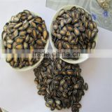 Hot sale China black watermelon hybrids seeds