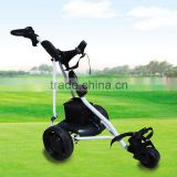 Electric remote control golf cart with CE certificate DG12150-B