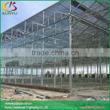 Venlo roof commercial glass greenhouse greenhouse glass panels