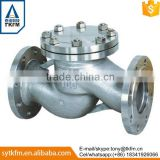 2015 TKFM hot sale city water supply pipeline use ductile iron cast iron flanged swing check valve