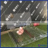 China manufacturer customized acrylic jewelry storage for necklace, bracelet / acrylic hanging jewelry organizer