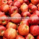 FRESH RED DELICIOUS AND TOP RED APPLE