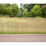 high quality natural privacy reed fence for garden