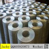 electric galvanized welded wire mesh,hot sale,good quality,best price,reliable supplier
