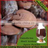 Wholesale Organic Reishi Mushroom Spore Powder