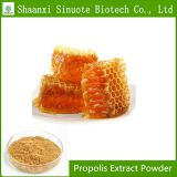 Factory Supply 100% Organic Propolis Extract Powder Flavone 30%
