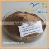 OEM bulk weight loss material 10%-90% Forskolin Coleus Forskohlii Extract Powder