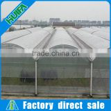 Hot Selling Made In China PE Plastic Large Tunnel Greenhouse For Agriculture /Vegetables