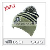 Custom Wholesale Design Fashion Winter Knitted Hat with pom pom