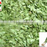 dehydrated green onion flakes