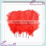 YHF#08 bulk cheap ostrich feather for events wedding party decoration                                                                         Quality Choice