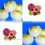 Free Sample High-Density EPE Foam Net Mesh Tube Packaging For Apple Fruits