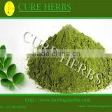 Herbal remedies powder for moringa