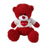 Plush teddy bear for Valentine's Day