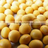soybean non gmo cheap price