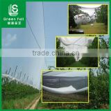 HDPE Agriculture Vineyard Plastic Apple Tree Anti Hail Net                                                                                                         Supplier's Choice