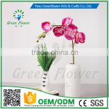 greenflower 2016 Real Touch PU Latex moth orchid artificial flowers for Wedding decrations flowers