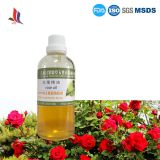 Pure Natural Rose Essential Oil Factory Wholesale Bulk