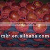 fresh apple fruit for sale red apple fuji
