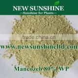 Manufacturer supply best price 80%WP mancozeb (fungicide dithane)