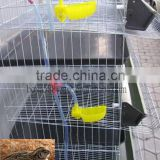 galvanized quail cage with plastic drinker